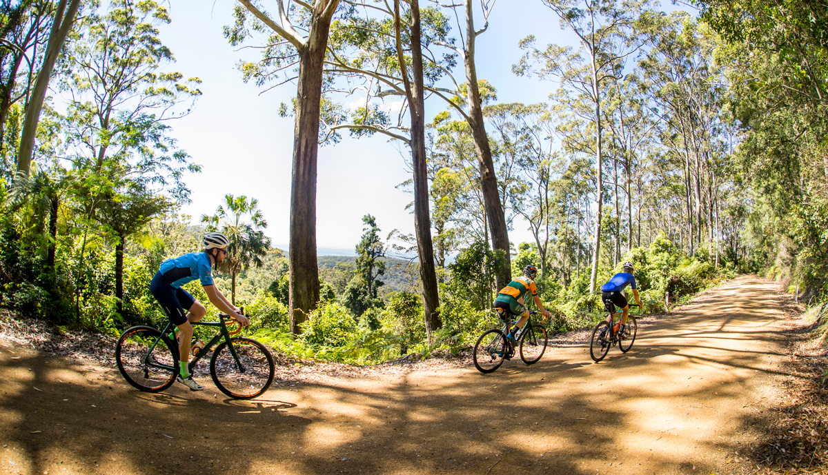 Cyclists in The Watagans