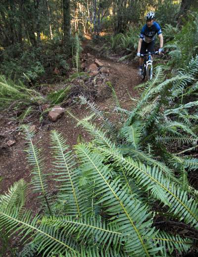 Ben Clark Tasmanian mountain biking for Bicycle Network