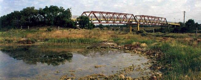 Maribyrnong wetland