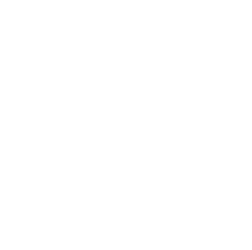 Luggage transfers icon