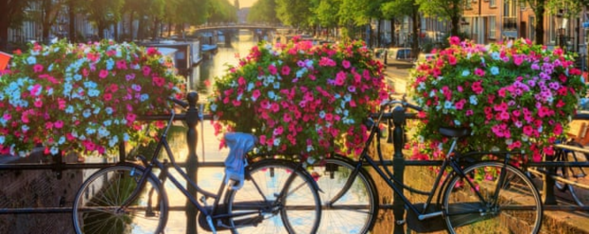 Amsterdam flowers bikes